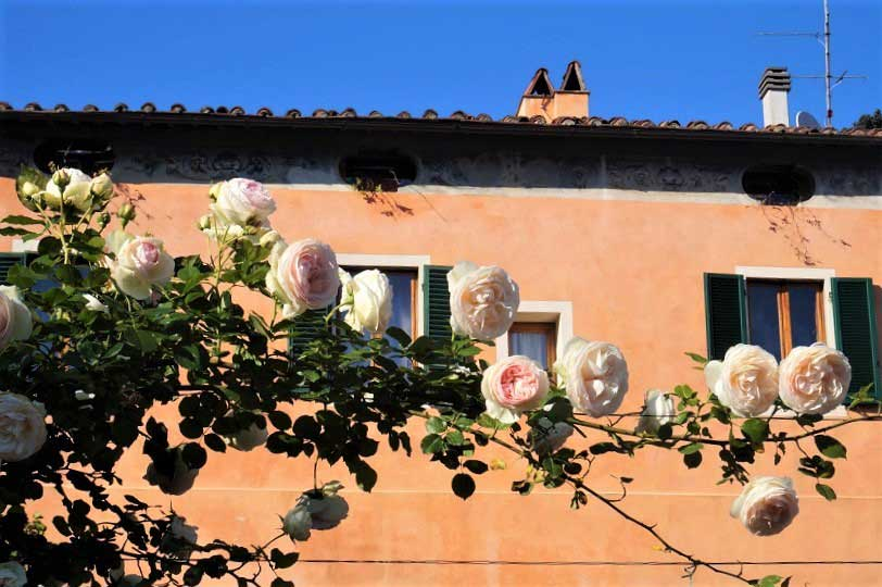 Springtime – the perfect time to visit Tuscany's small towns and countryside