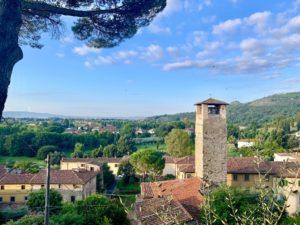 Explore the towers of Vicopisano